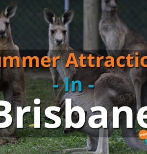 Summer Attractions In Brisbane